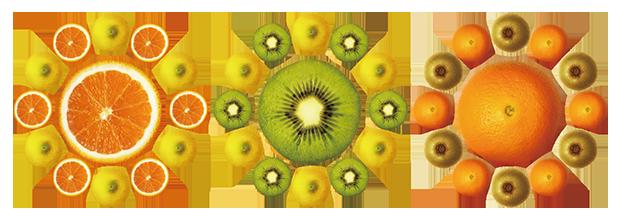 fruit_process_2